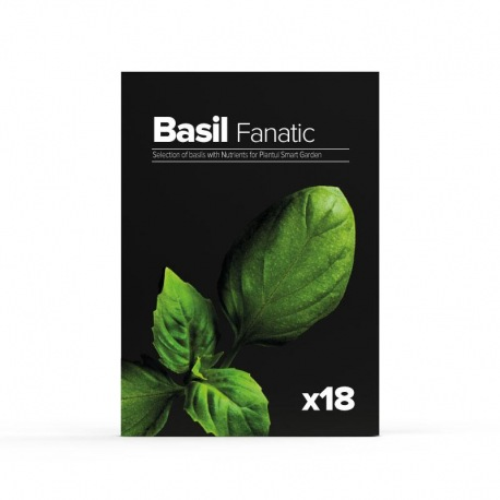Mix plante Basil Fanatic